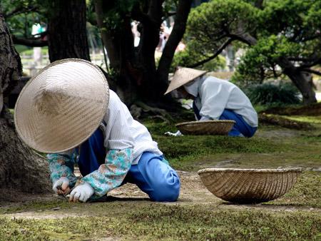Le japon jardin de kenrokuen for Jardin kenrokuen en kanazawa